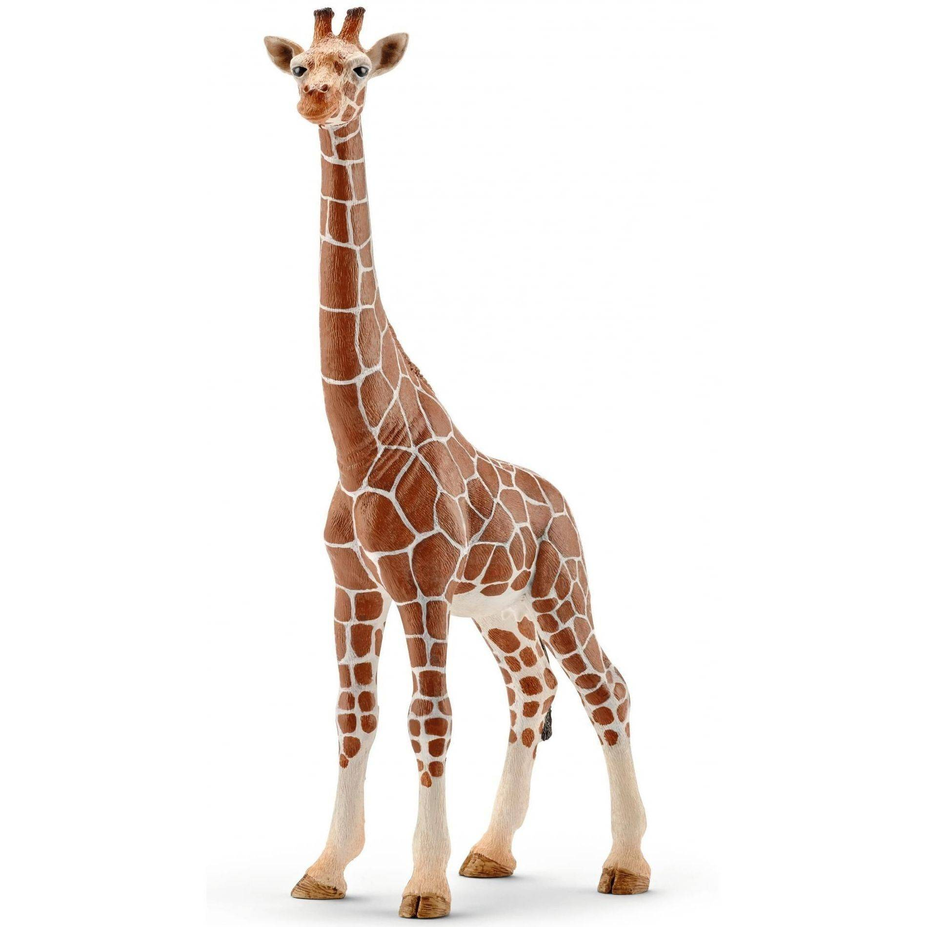 Schleich 14750 samica Żyrafy