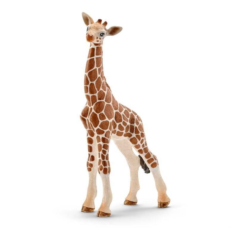 żyrafa schleich