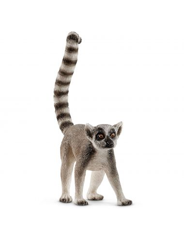 Schlecich 14827 lemur