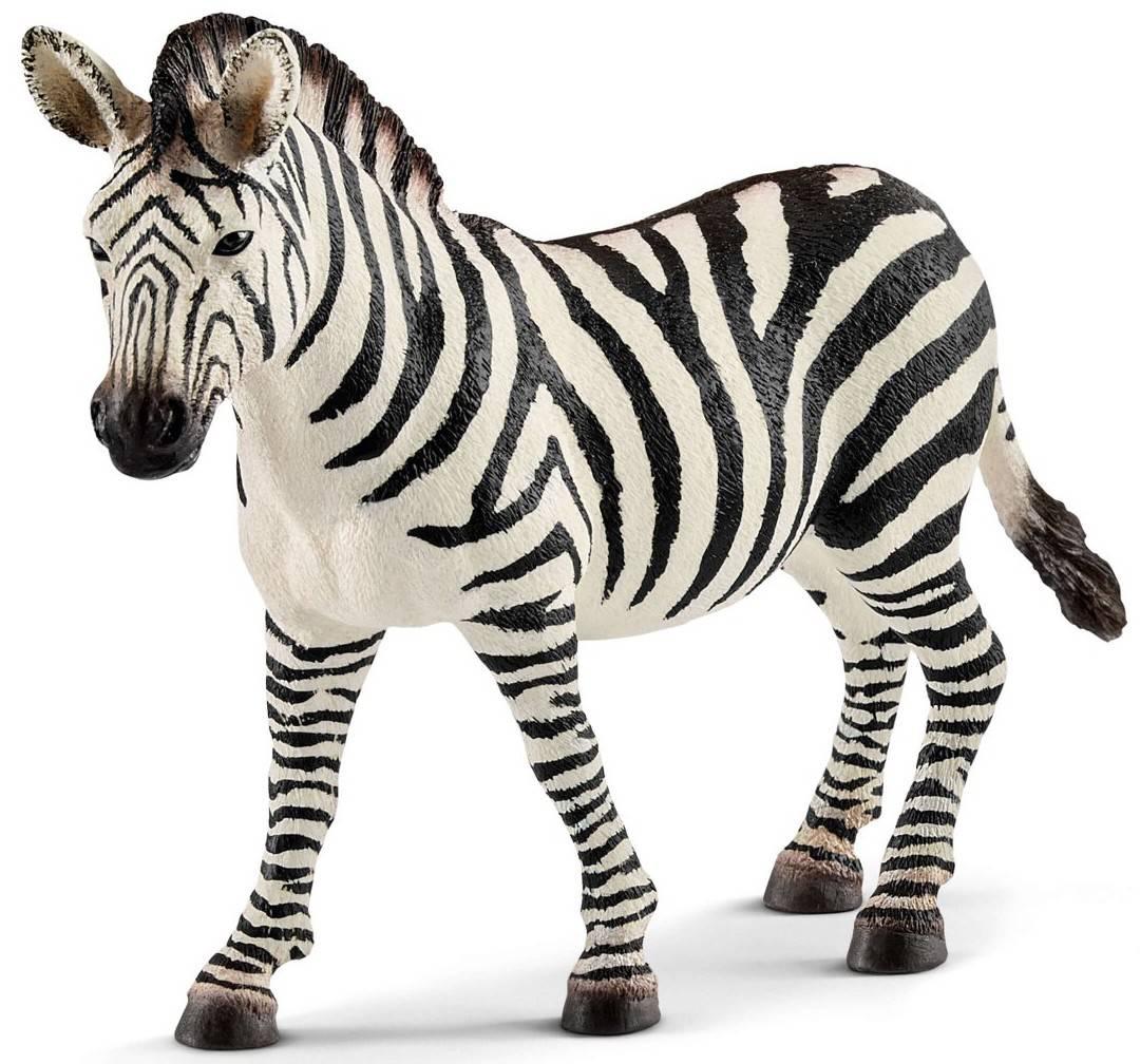zebra schleich