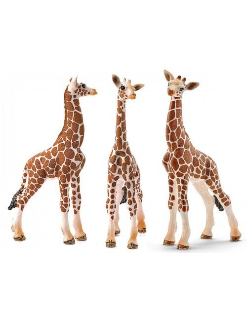 Schleich 14751 Młoda Żyrafa