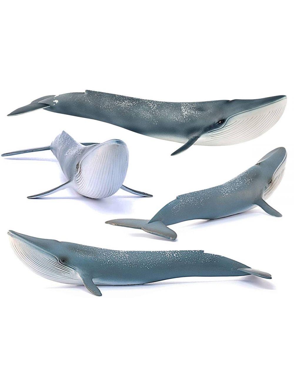 Schleich 14806 Płetwal Błękitny